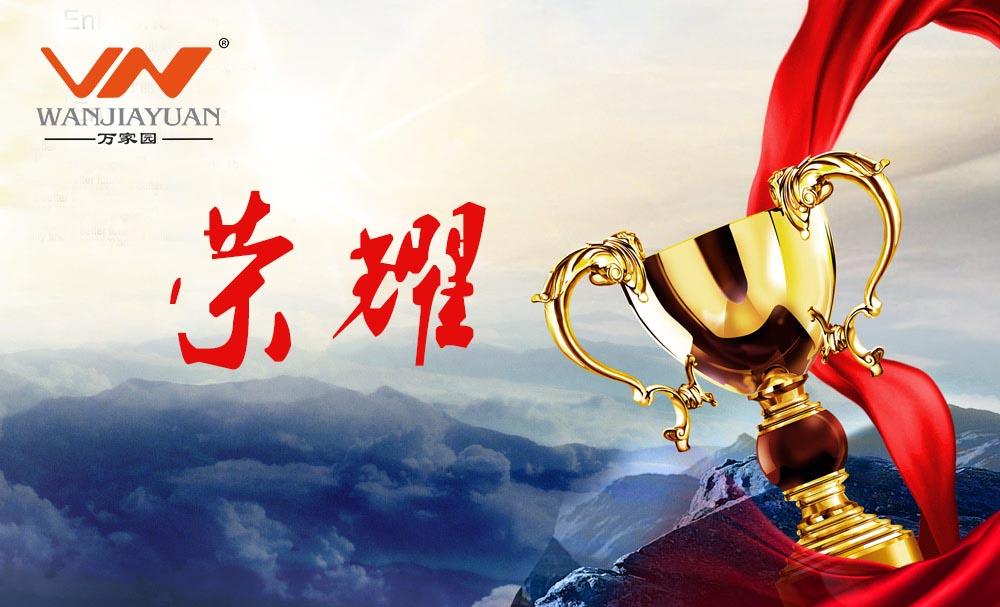 首届中国木门窗企业家峰会万家园载誉而归